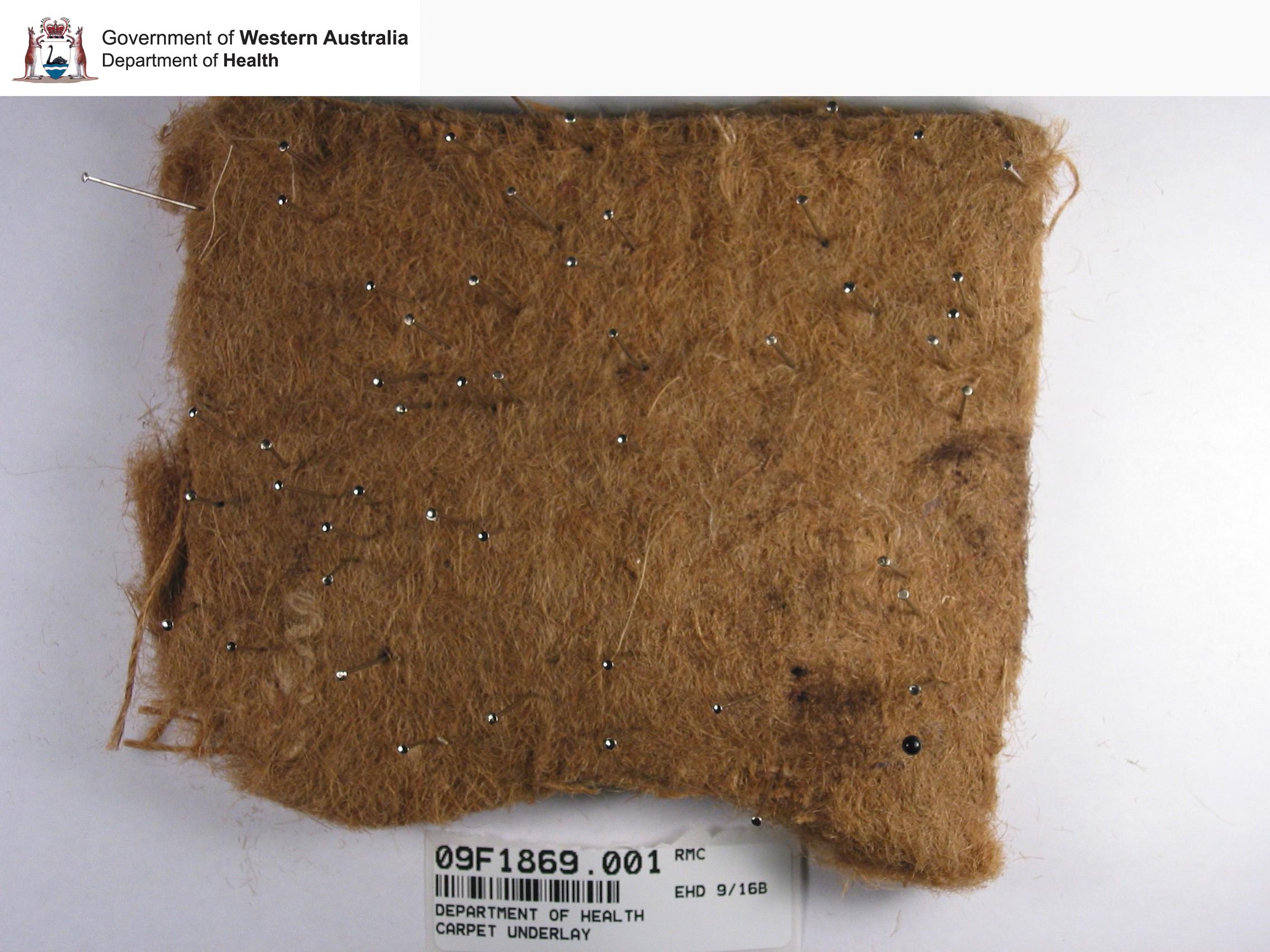 Asbestos Database A Z Asbestos Awareness