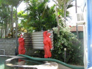 Pool fence removal - Photo by Townsville Asbestos