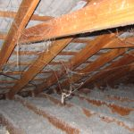 http://asbestosawareness.com.au/wp-content/uploads/2016/11/Insulation-Loose-Fill-Asbestos-3740_-006.jpg